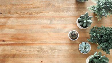 Photo of De voordelen van een duurzame vloer